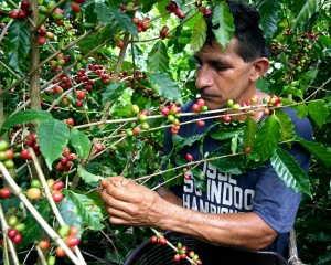 Costa Rica, crecimiento exprés con las nuevas tecnologías