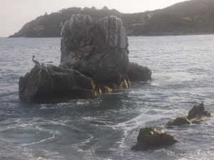 Vivir en el mar (3)